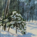 Nancy McLean Watercolours-Winter Shadows.JPG