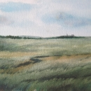 windswept_moor_nancy_mclean