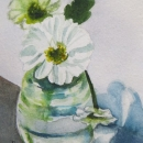 White Blooms -Nancy McLean Watercolours.JPG
