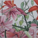 nancy_mclean_lilies_and_lunaria